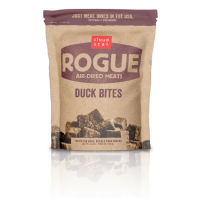 rogue_duck_isolated